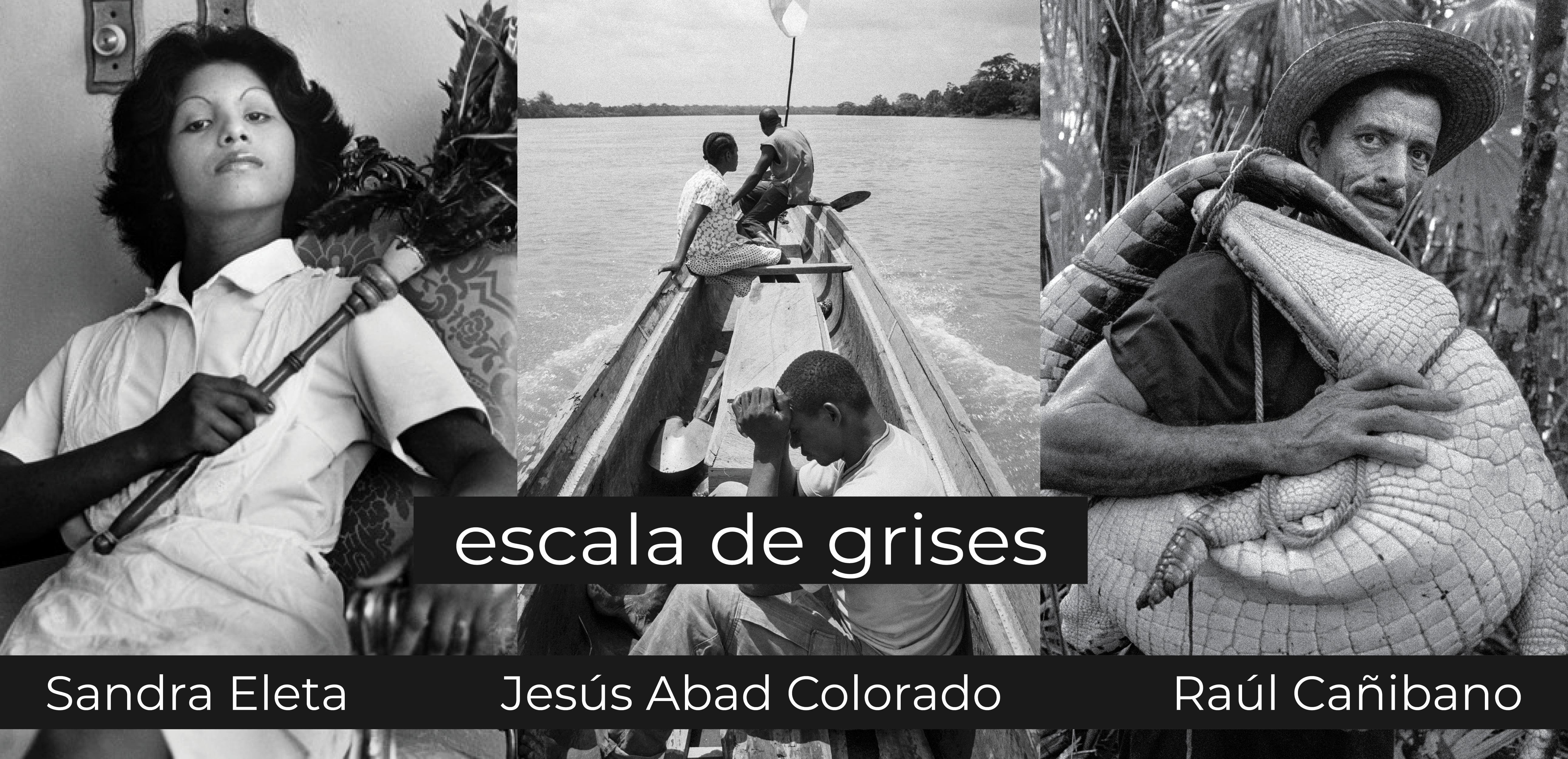 Escala de Grises website cover